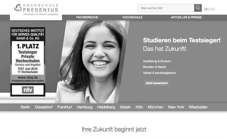 Ab dem WS 18/19 lehre ich an der Hochschule Fresenius